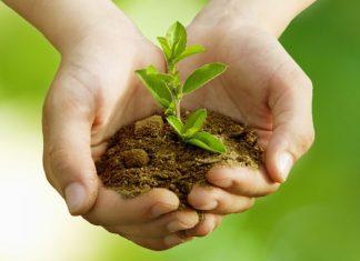 Bumi adalah Kita: Menjaga Bumi Adalah Menjaga Diri Kita Sendiri